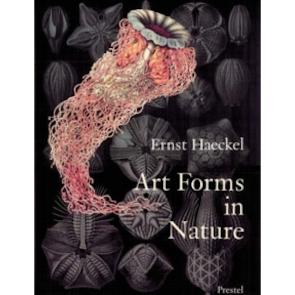 Art Forms in Nature: Prints of Ernst Haekel by Richard Hartmann, Irenaus Eibl-Eibersfeldt, Olaf Breidbach (Paperback, 1998)