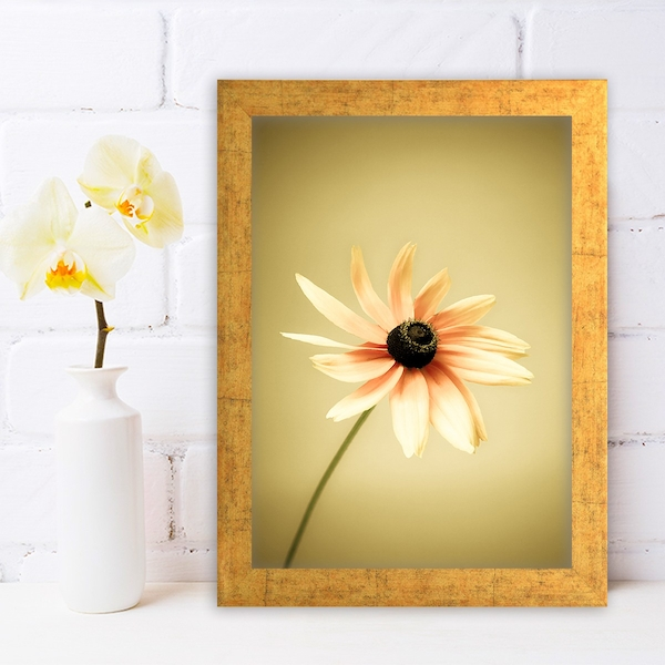 AC346430352 Multicolor Decorative Framed MDF Painting