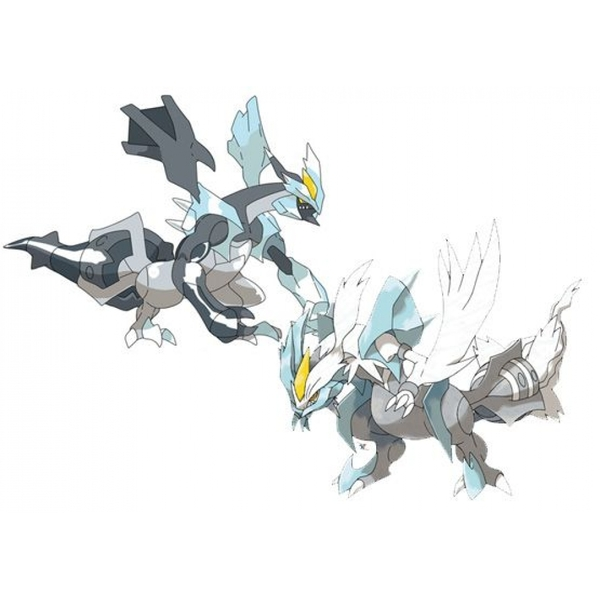 Pokemon Tcg Black Kyurem Vs White Kyurem Battle Arena