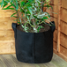 Plant Grow Bags | M&W 3x 10 Gal - Image 2
