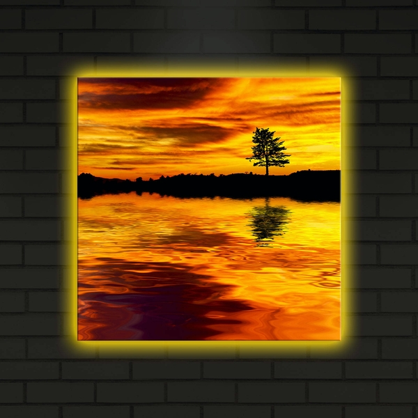 4040DACT-2 Multicolor Decorative Led Lighted Canvas Painting