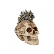 Sword Hawk Small Skull