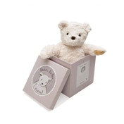 Ragtales Darcy The Bear Soft Toy With Gift Box