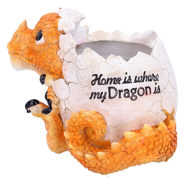 Home is Where My Dragon is Orange Dragon Pot