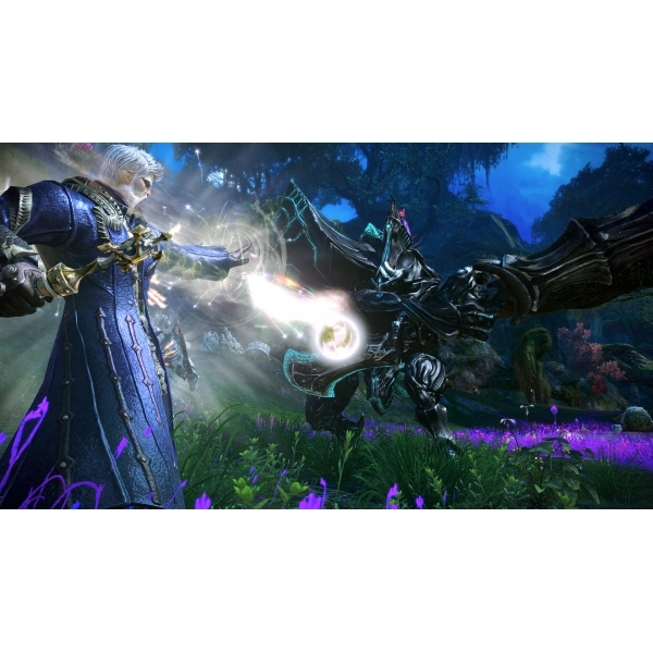 TERA Game PC - Image 4