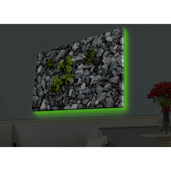 4570HDACT-028 Multicolor Decorative Led Lighted Canvas Painting