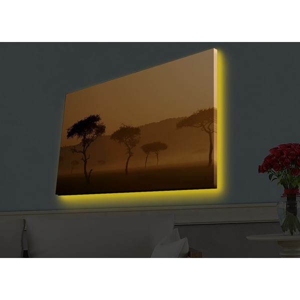 4570HDACT-004 Multicolor Decorative Led Lighted Canvas Painting