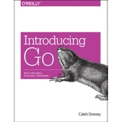 Introducing Go by Caleb Doxsey (Paperback, 2016)