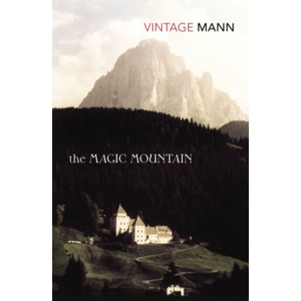 The Magic Mountain by Thomas Mann (Paperback, 1996)