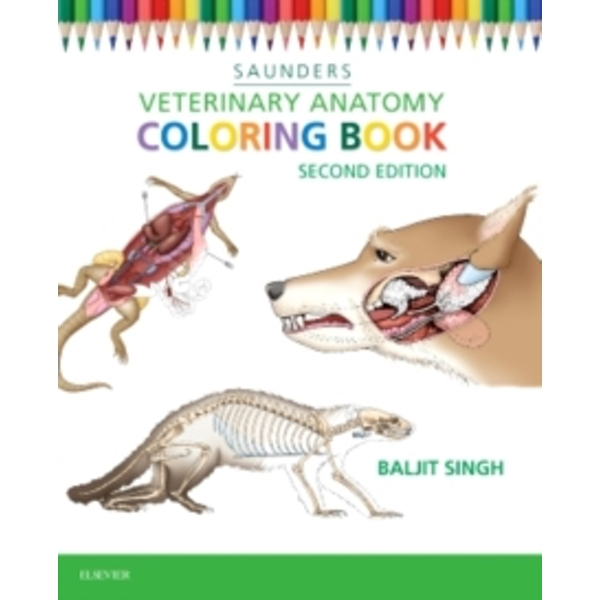 Veterinary Anatomy Coloring Book by Saunders (Paperback, 2015)