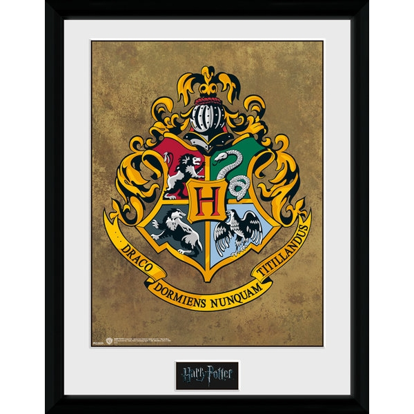Harry Potter Hogwarts 30 x 40cm Collector Print