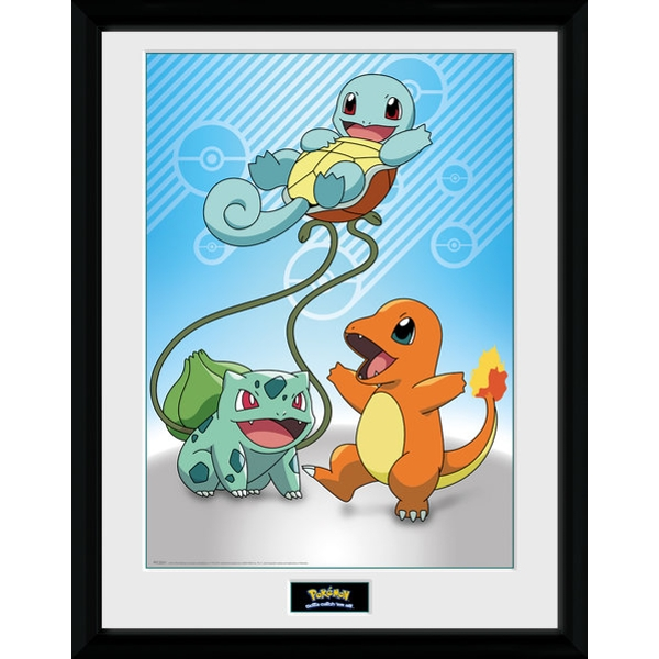 Pokemon Kanto Starters Collector Print