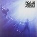 Foals - Total Life Forever Vinyl - Image 2