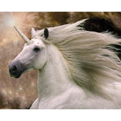 Bob Langrish Unicorn Mini Poster