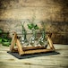 Bulb Vases with Wooden Stand | M&W - Image 2