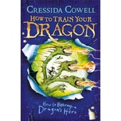 How To Train Your Dragon: How to Betray a Dragon's Hero : Book 11