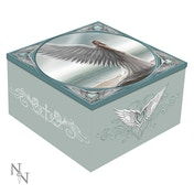 Spirit Guide Mirror Box