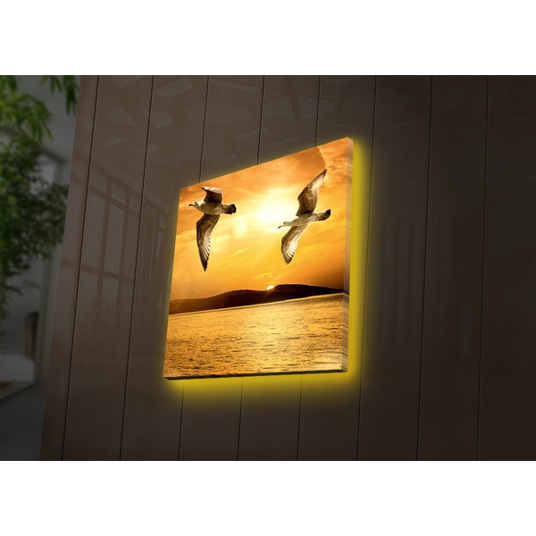 4040DACT-34 Multicolor Decorative Led Lighted Canvas Painting