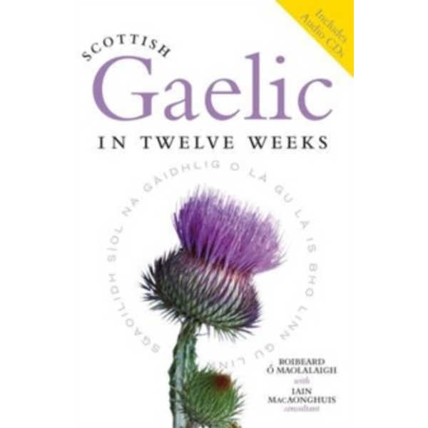 Scottish Gaelic in Twelve Weeks by Roibeard O Maolalaigh, Iain MacAonghuis (Paperback, 2011)