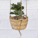 Two Tier Hanging Seagrass Planter | M&W - Image 4