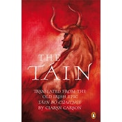 The Tain by Penguin Books Ltd (Paperback, 2008)