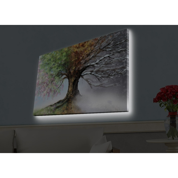 4570HDACT-052 Multicolor Decorative Led Lighted Canvas Painting