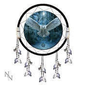 Awaken Your Magic Dreamcatcher