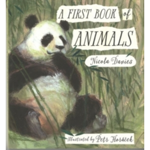 A First Book of Animals by Nicola Davies (Hardback, 2016)