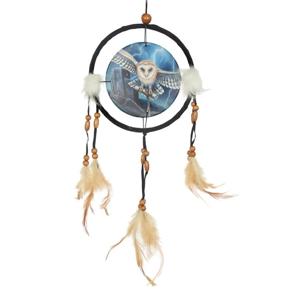 Heart of the Storm Owl Dreamcatcher Small
