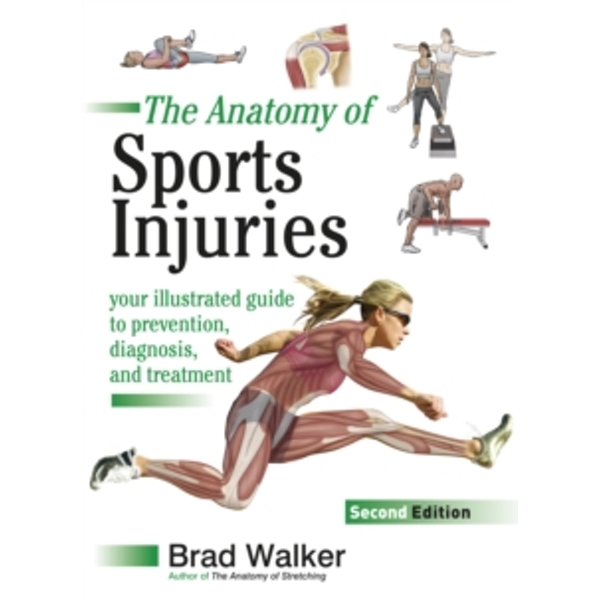 Sports Injuries : Your Illustrated Guide to Prevention, Diagnosis and Treatment