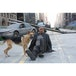 I Am Legend Blu Ray - Image 8