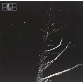 Peter Broderick - (Colours of the Night) Satellite 12 Inch Vinyl