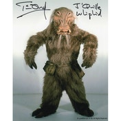 Star Wars - Personally Signed 10X8 - Tim Dry - Whiphid