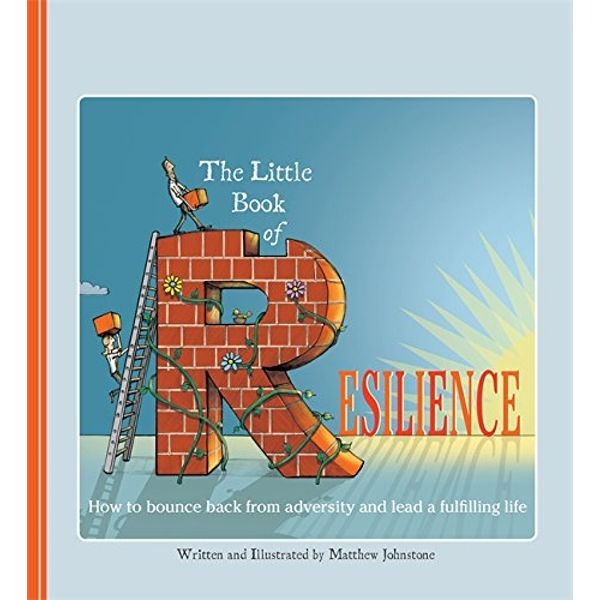 The Little Book of Resilience: How to Bounce Back from Adversity and Lead a Fulfilling Life by Matthew Johnstone (Paperback, 2015)