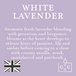 White Lavender (Polka Dot Collection) Wax Melt - Image 3