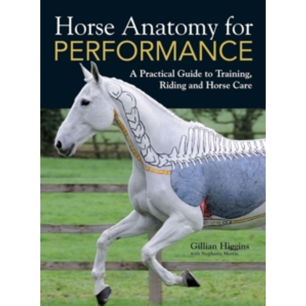 Horse Anatomy for Performance : A Practical Guide to Training, Riding and Horse Care