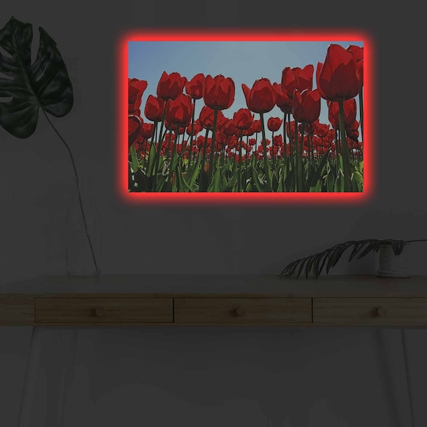 4570DHDACT-036 Multicolor Decorative Led Lighted Canvas Painting