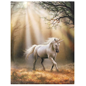 Small Glimpse Unicorn Canvas Picture By Anne Stokes