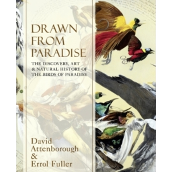 Drawn From Paradise : The Discovery, Art and Natural History of the Birds of Paradise