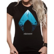 Aquaman Movie - Logo And Symbol Women's Large T-Shirt - Black