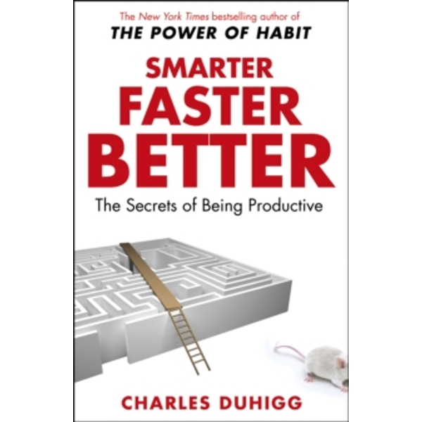 Smarter Faster Better : The Secrets of Being Productive (Paperback, 2017)