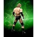 Triple H (WWE) Bandai Tamashii Nations Figuarts Figure - Image 4