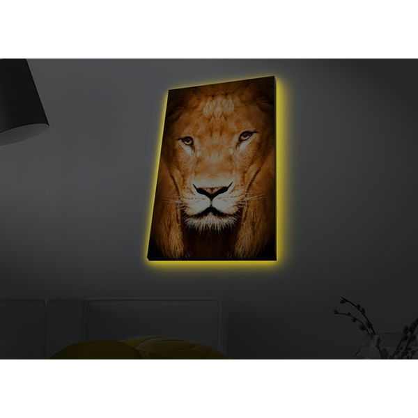4570MDACT-050 Multicolor Decorative Led Lighted Canvas Painting