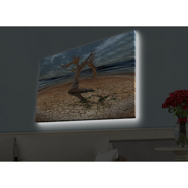 4570HDACT-037 Multicolor Decorative Led Lighted Canvas Painting