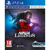 Ninja Legends PS4 Game (PSVR Required)