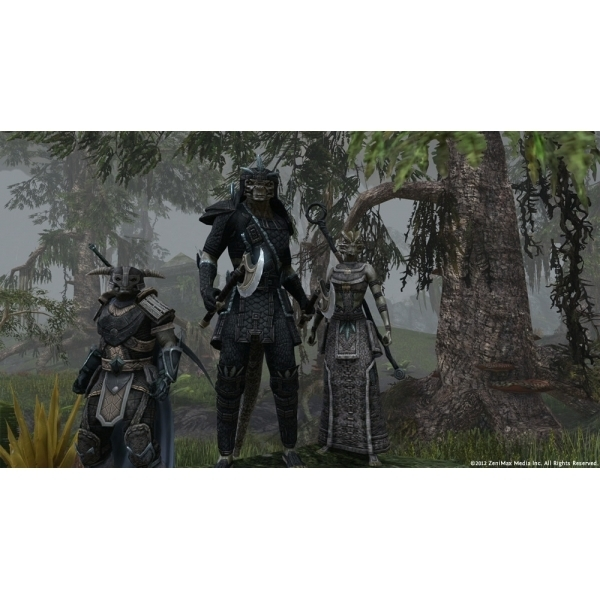 The Elder Scrolls Online Game PC CD Key Download - Image 8