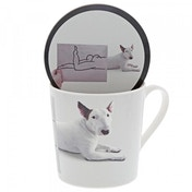 Posing (Jimmy the Bull) Dog Mug & Coaster Set