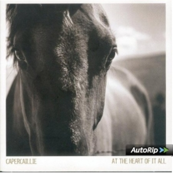 Capercaillie - At The Heart Of It All CD