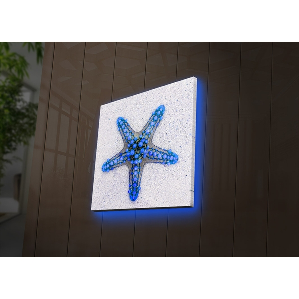 2828DACT-50 Multicolor Decorative Led Lighted Canvas Painting