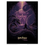 Harry Potter & the Eyes of the Basilisk (Harry Potter) Art Print